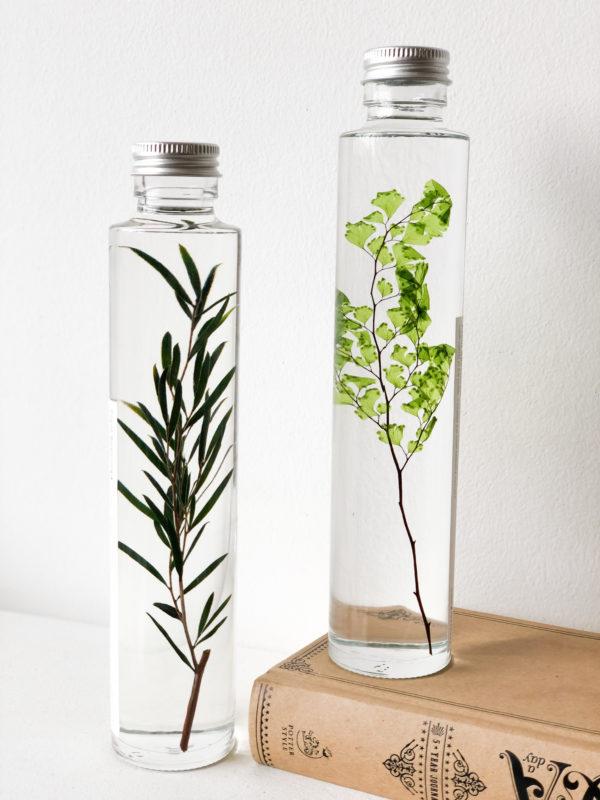 Herbarium Tall #1