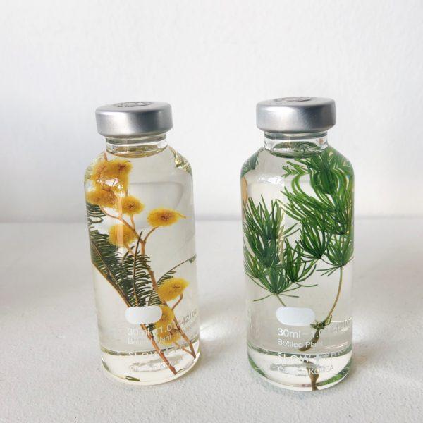 Herbarium #3
