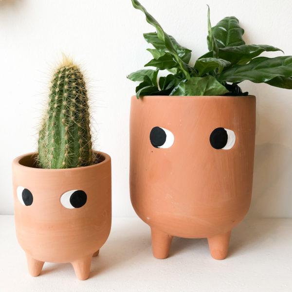 Cache-pots Buddy