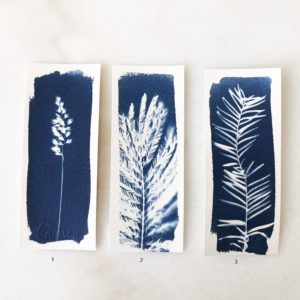 Marque page Cyanotype Carasco #1