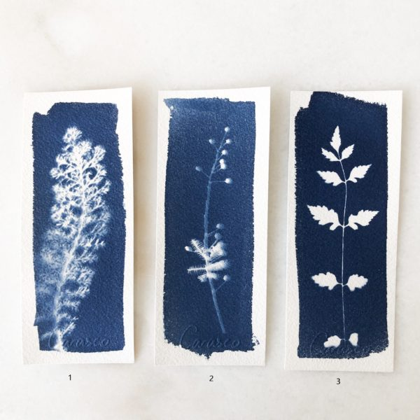 Marque page Cyanotype Carasco #5